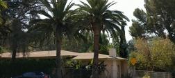 9830 Craig Mitchell Ln, Sunland, CA 91040